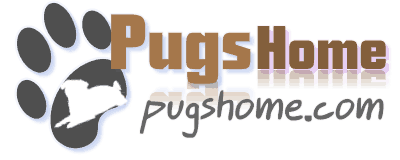 Pugs Home