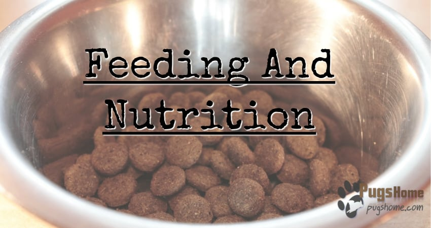 Feeding And Nutrition